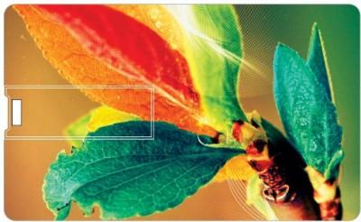 Printland Credit Card Colored Leaves PC80726 8 GB Pen Drive(Multicolor)