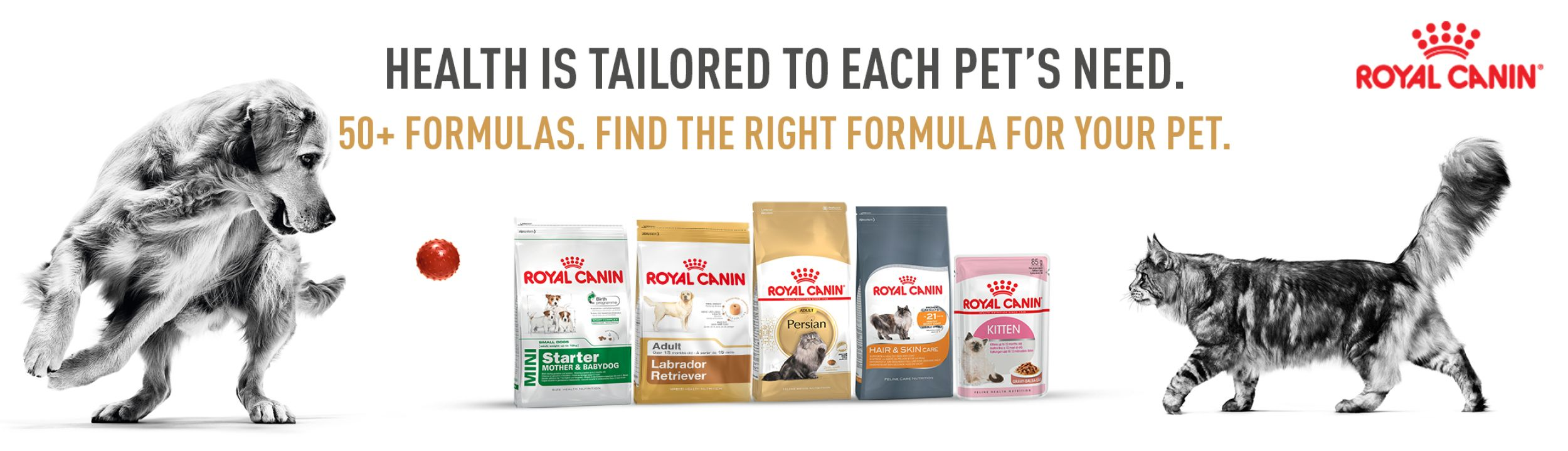 Royal Canin Persian Adult 1kg Pet Day Special Offers On Food And Supplies Online At Best Price In India