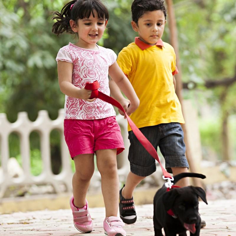 Flipkart - Kids' Fashion, Toys & Baby Care Kids' Essentials