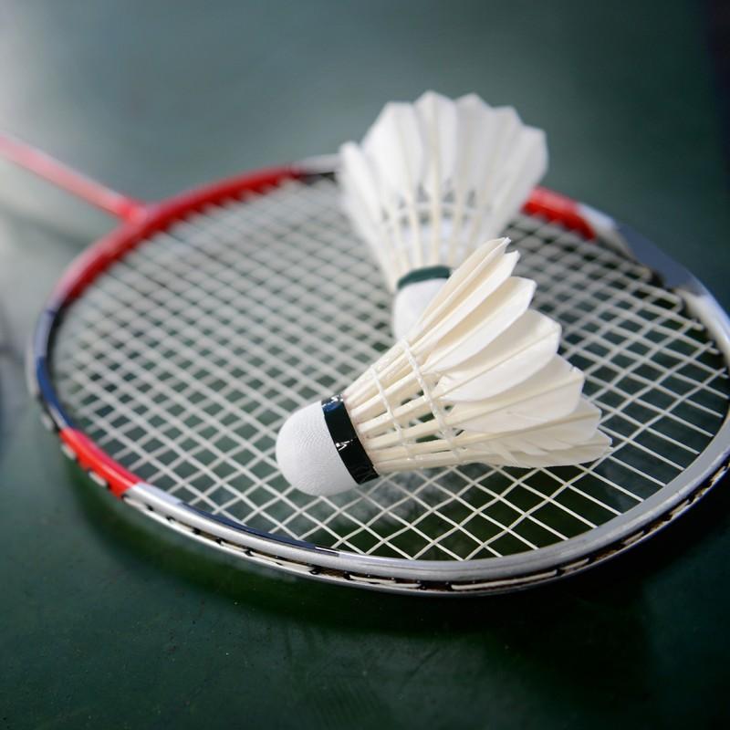 Upto 80%+Extra5% Off  - Badminton Raquets