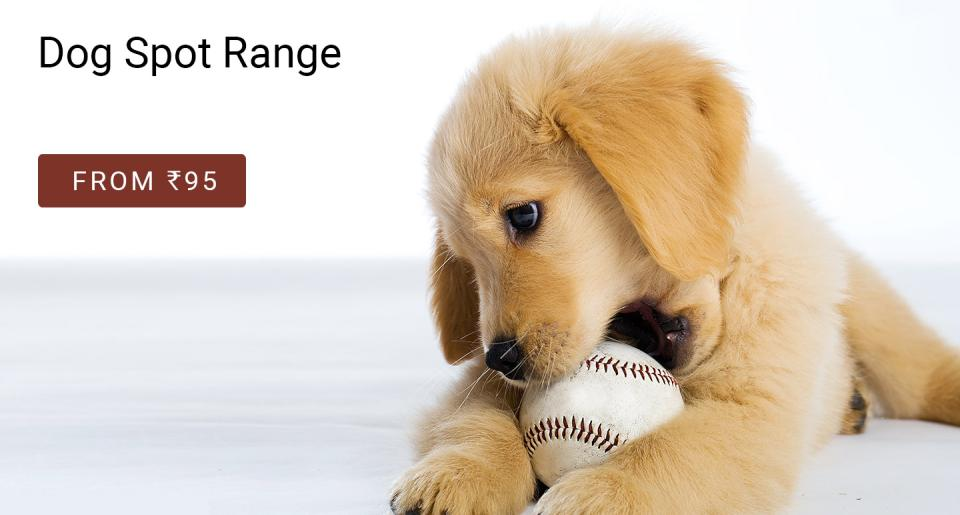 pet day special offers on pet food and supplies online at best price
