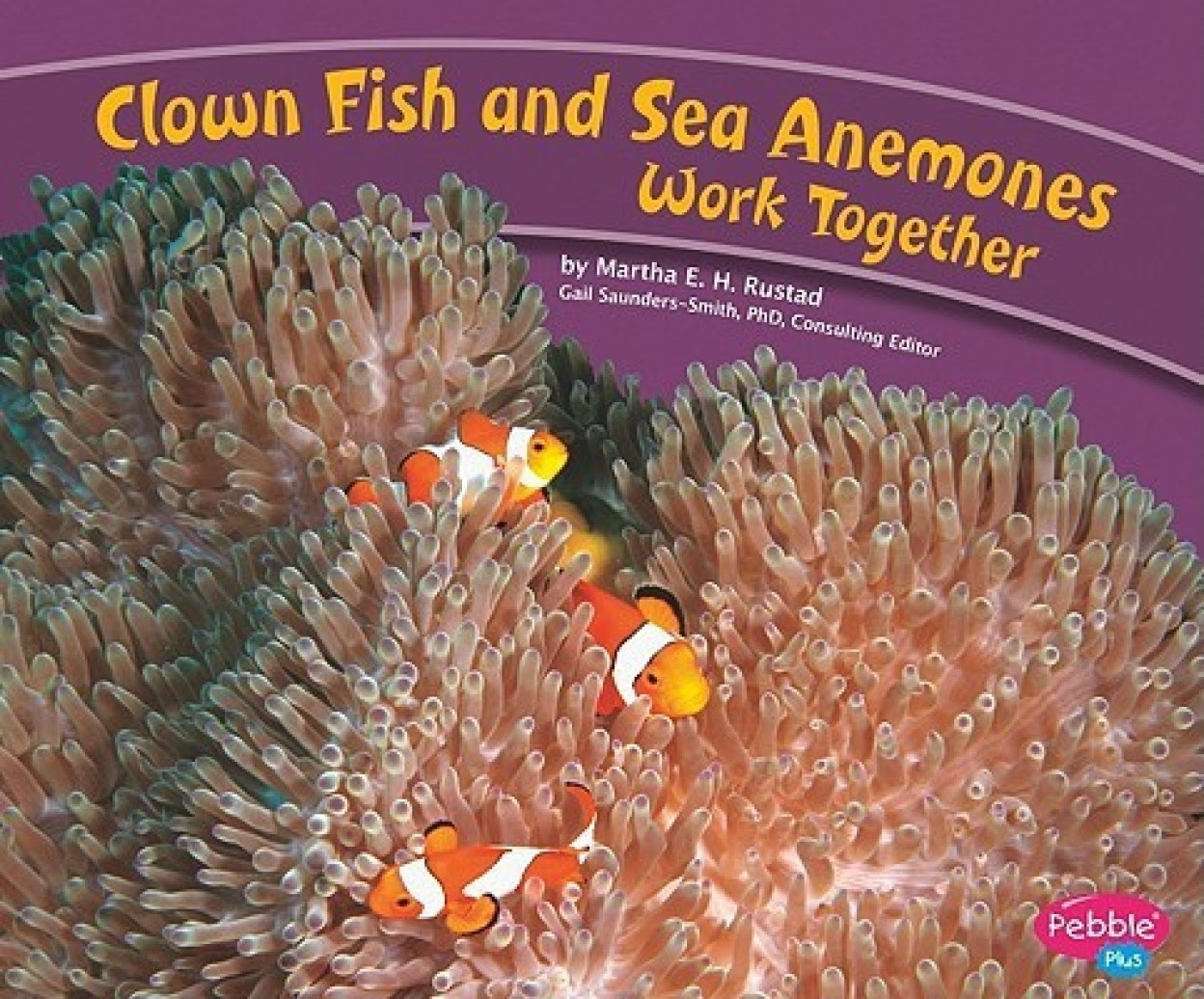 Clown Fish and Sea Anemones Work Together Hardcover