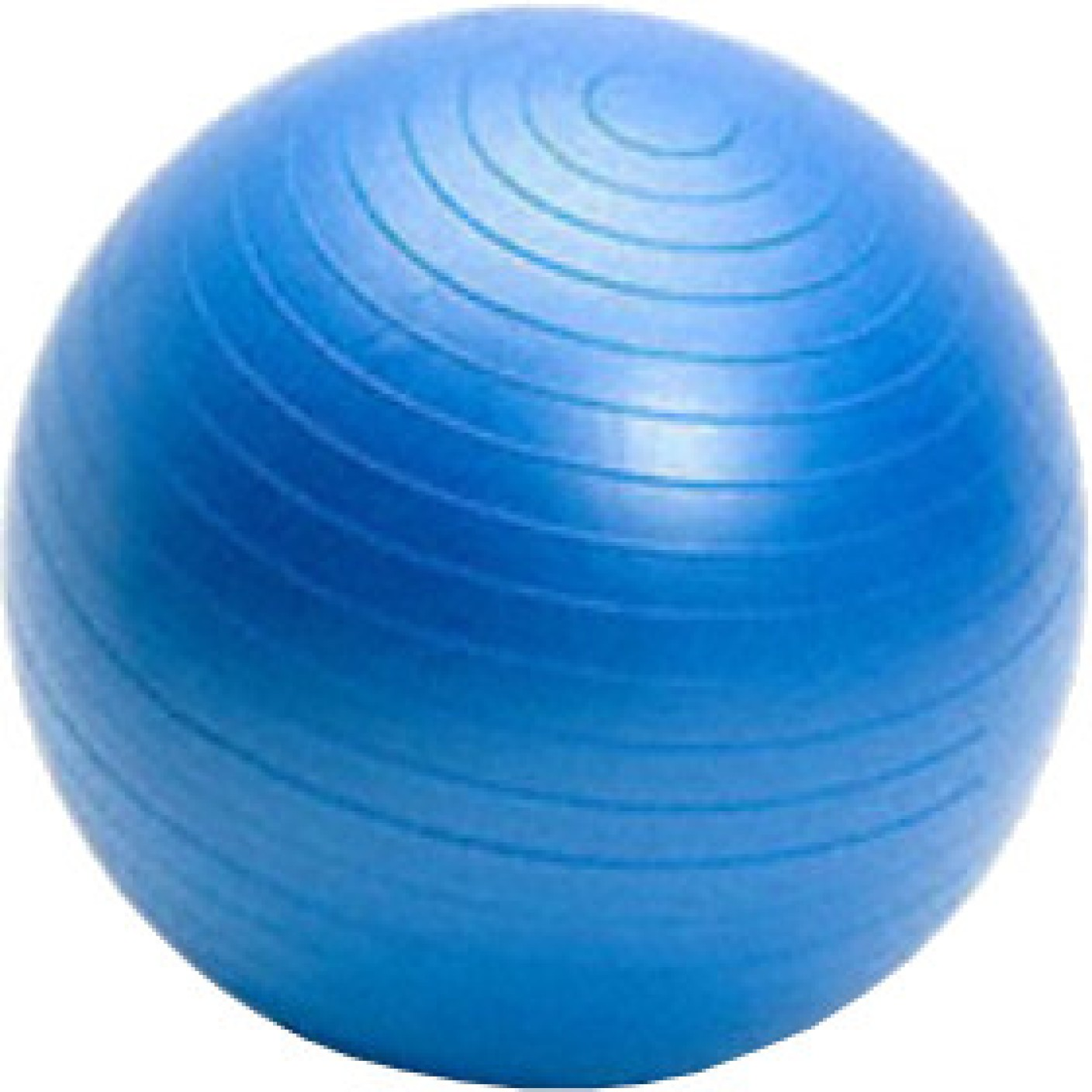 Vector gym ball buy online at best