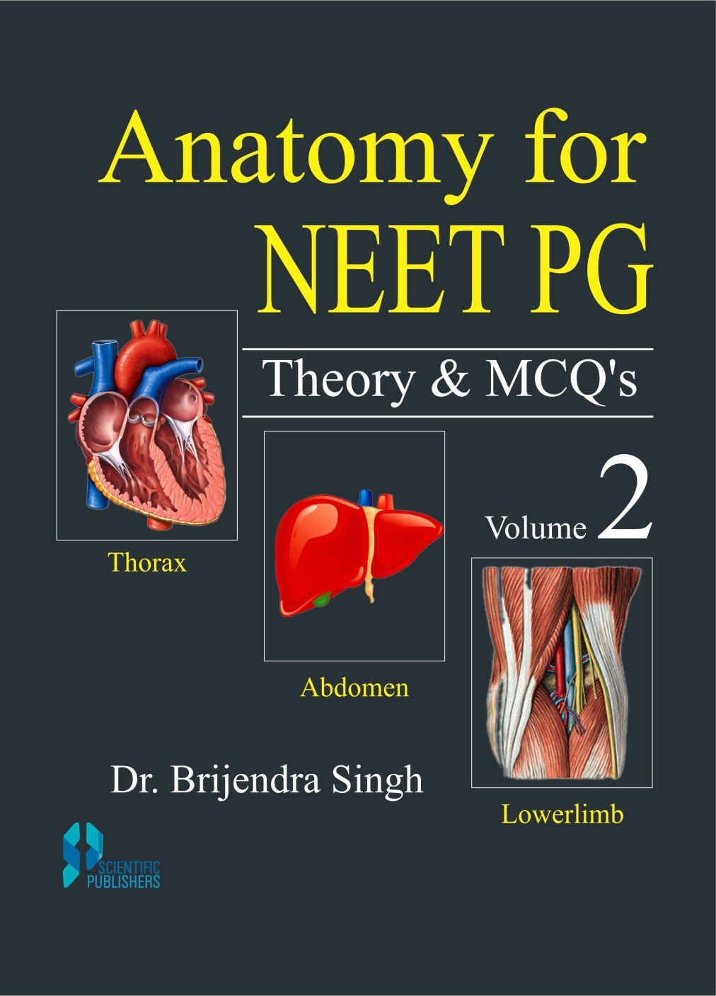 Anatomy of thorax mcqs. Research paper Writing Service ...