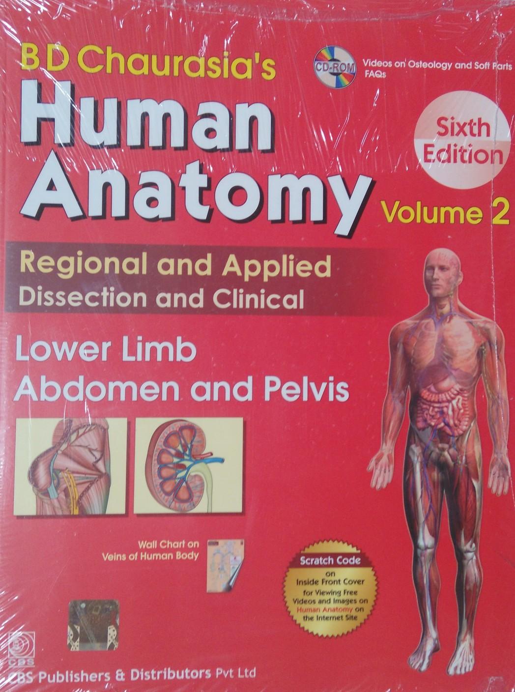 Gro Anatomy Of Human Body Videos Bilder Menschliche Anatomie