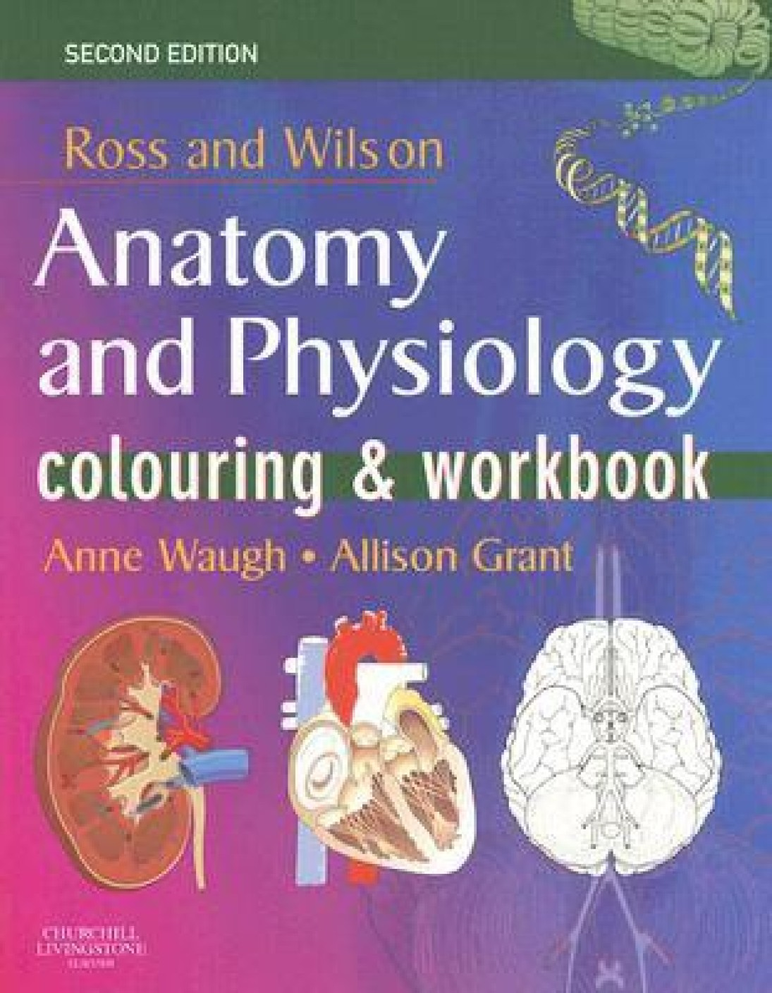 Ross and Wilson\'s Anatomy and Physiology Colouring and Workbook 2nd ...