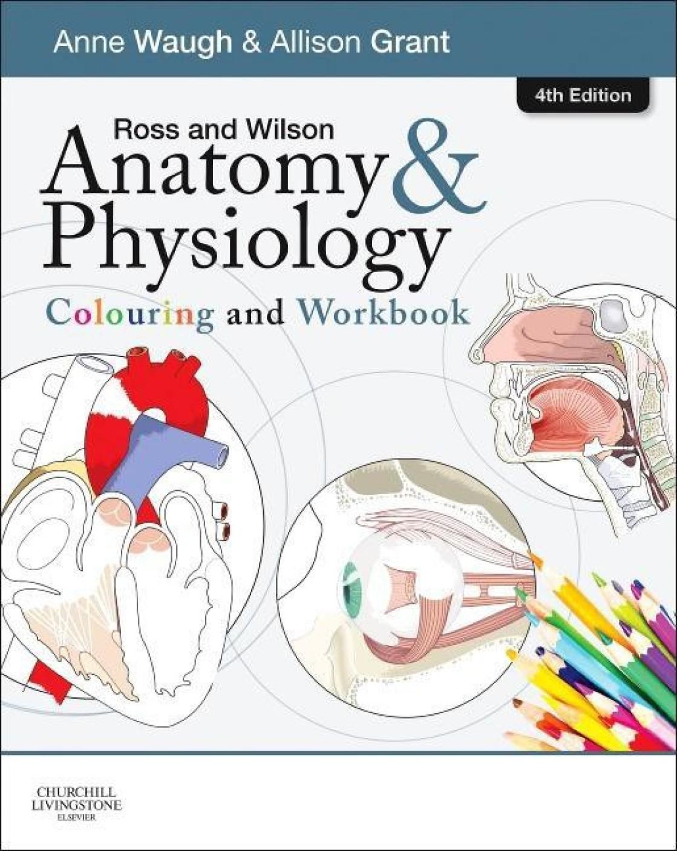 Schön Anatomie Und Physiologie Von Ross Und Wilson 11. Ausgabe Ideen ...