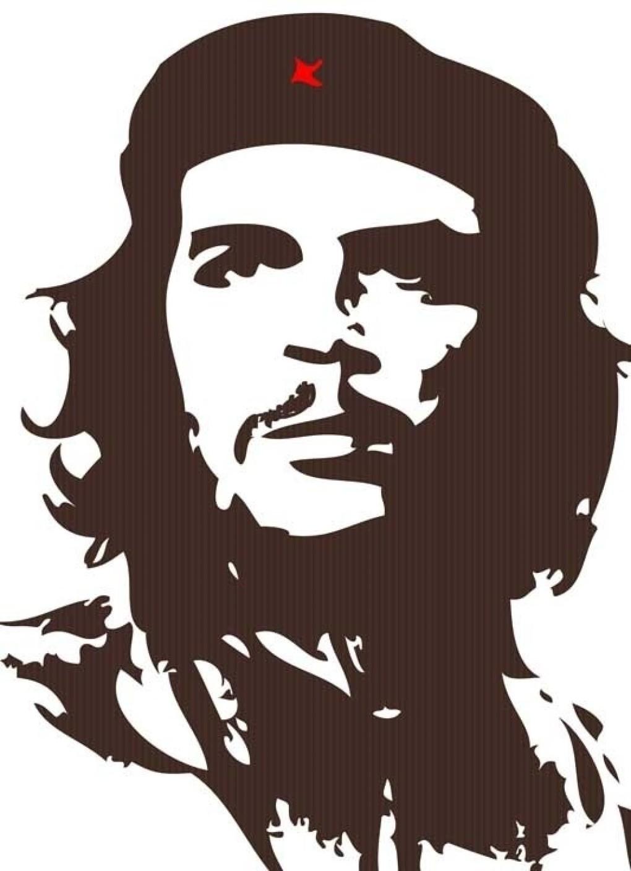 Che Guevara Essay | Many Essays