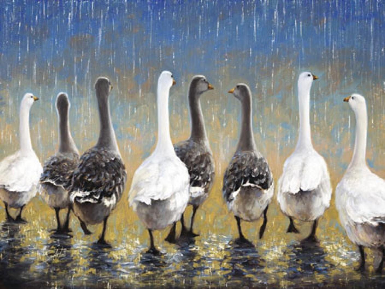 Waddling In The Rain Fine Art Print Sambataro Posters