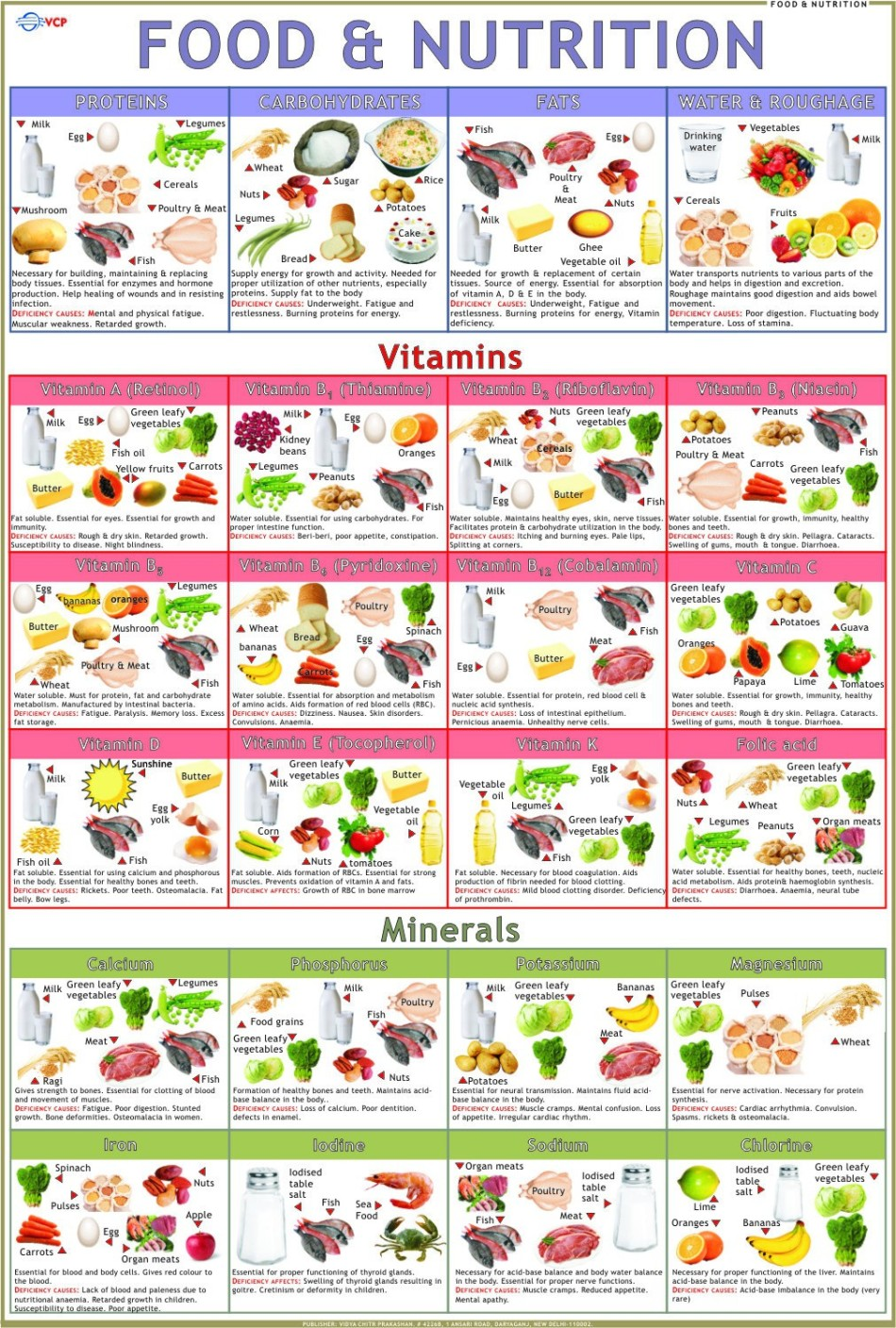 Scientifically Proven Benefits of Food