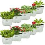 TrustBasket Set of 10 Large Poly Grow Bags UV Stabilized [24CMS(L)X24CMS(W)X40CMS(H)] Grow Bag
