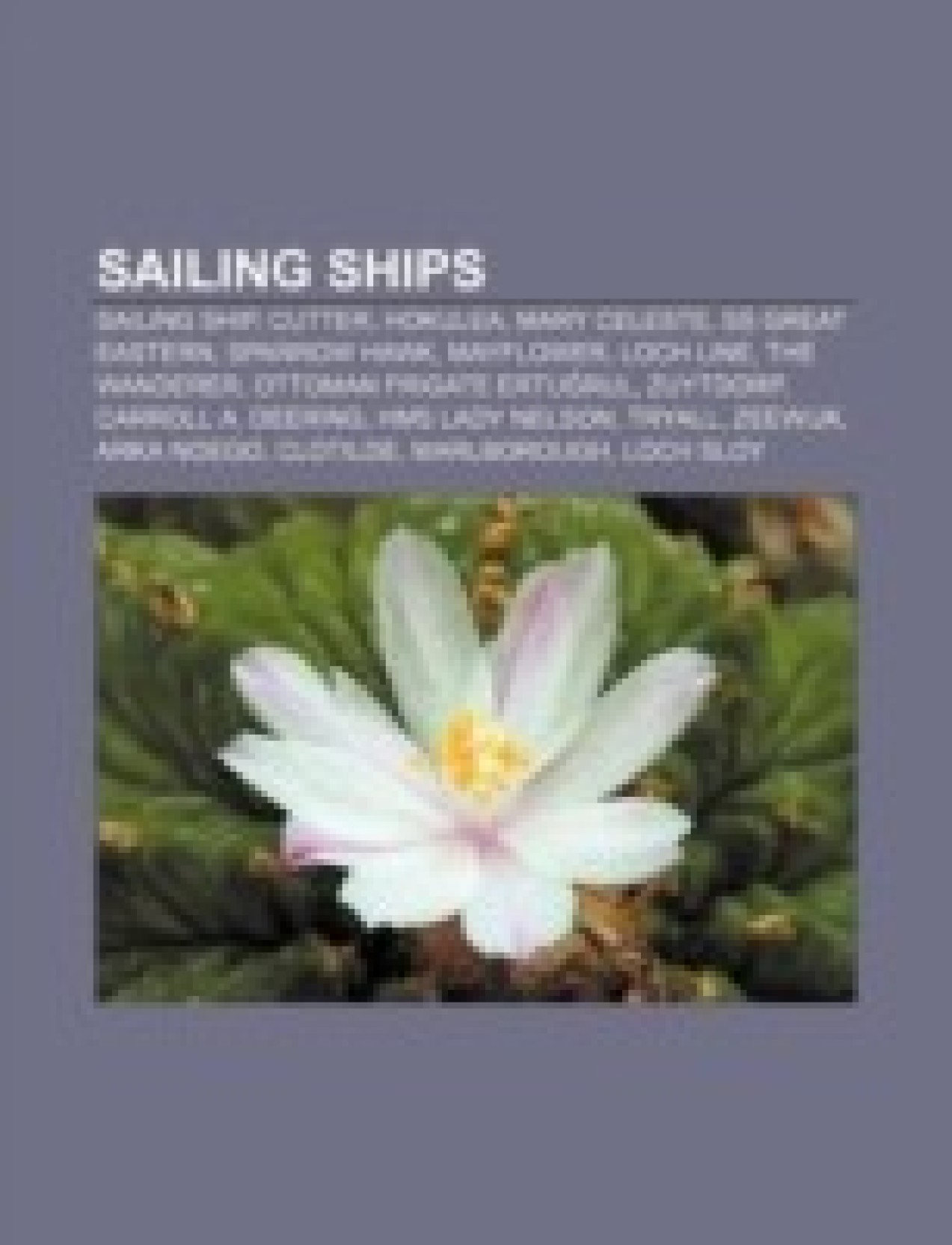 Sailing Ships Sailing Ship Amsterdam Hokulea Mary Celeste Ss