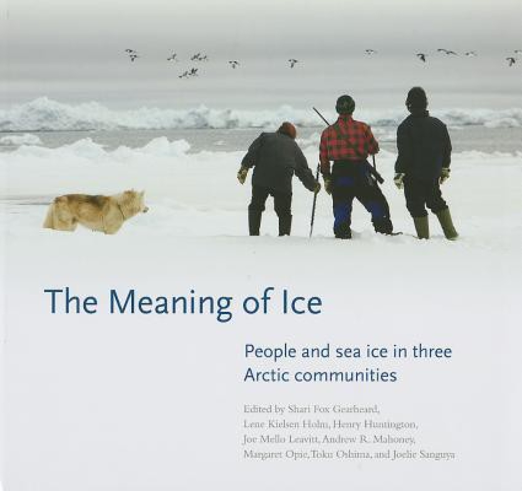 The Meaning of Ice: Buy The Meaning of Ice by Opie Mahoney