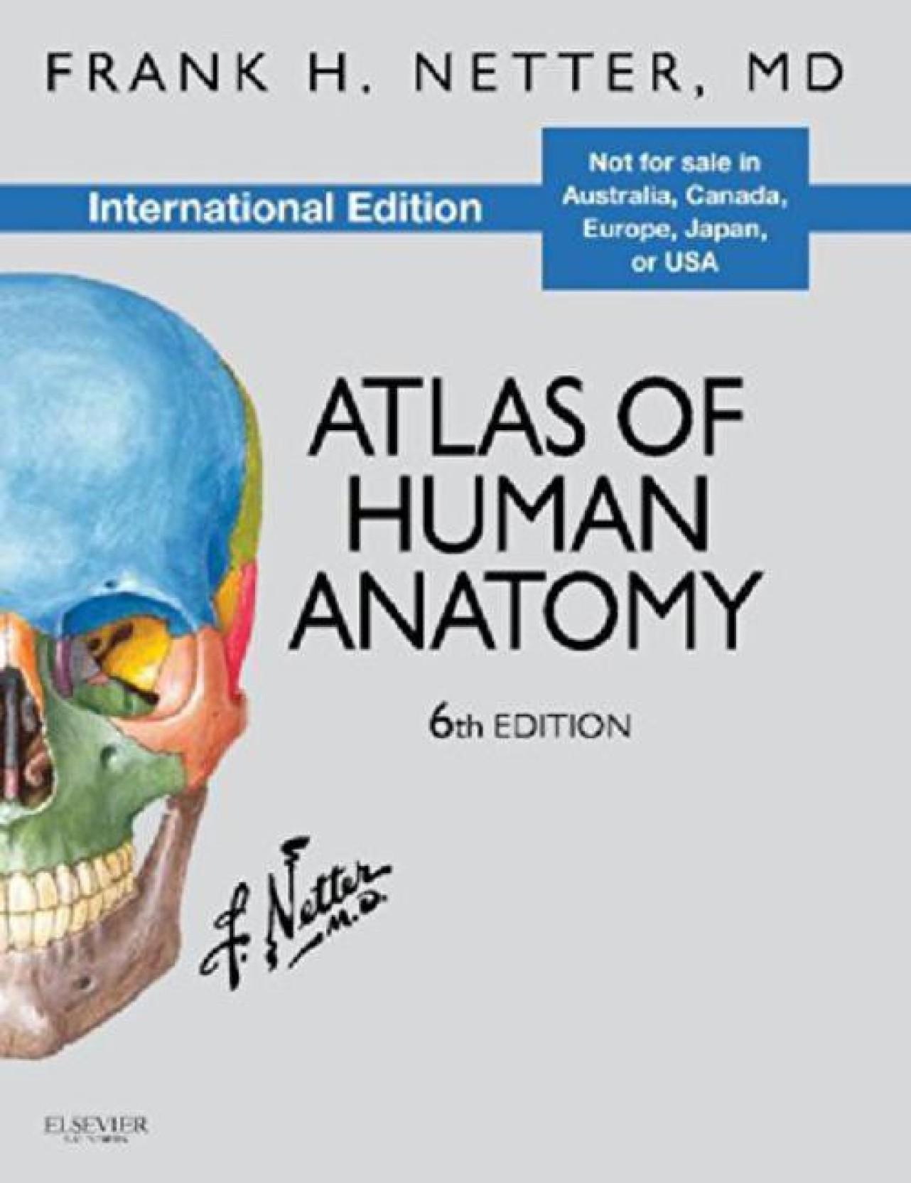 Atlas of Human Anatomy, International Edition 6th Edition: Buy Atlas ...