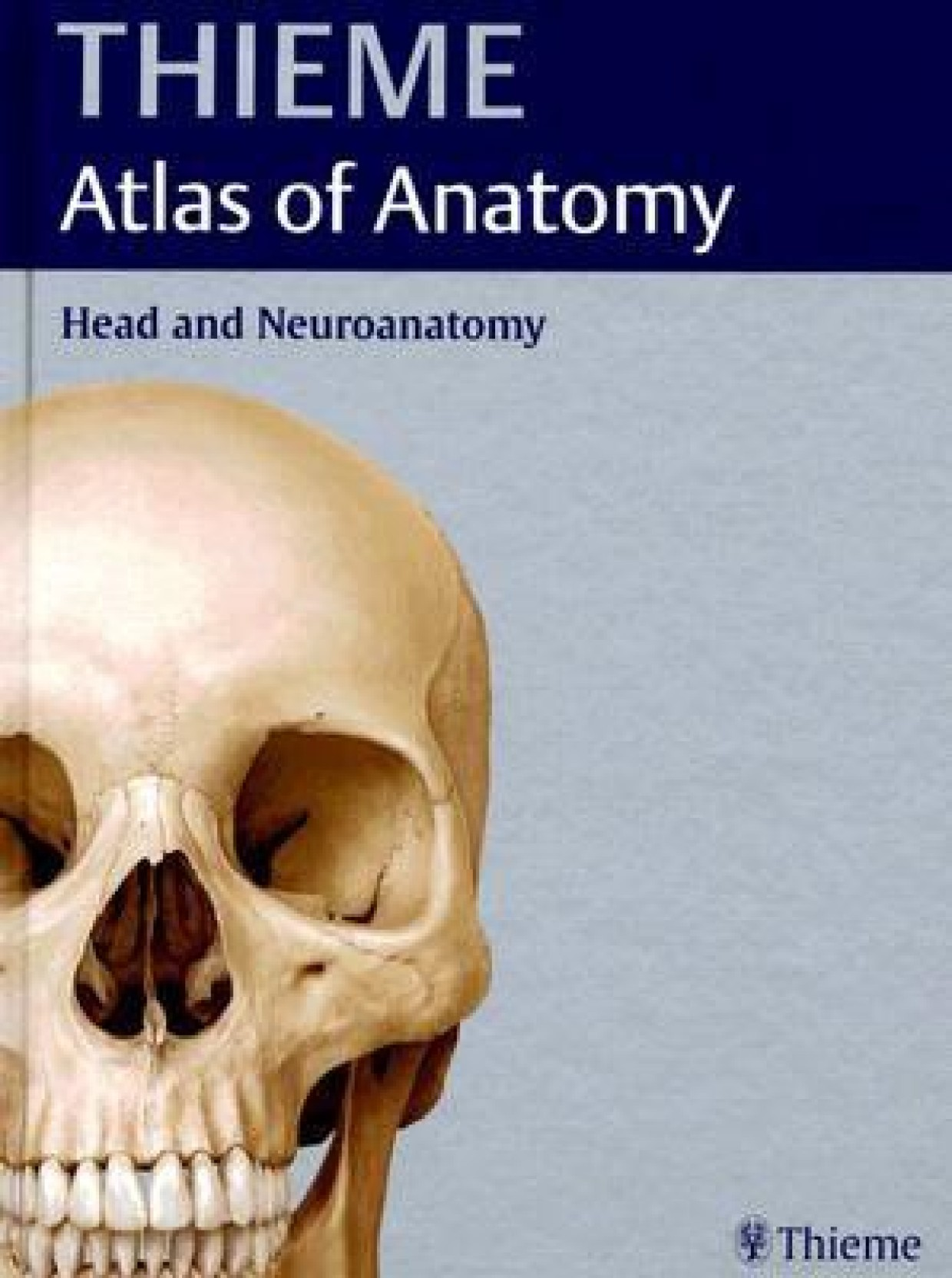 Head and Neuroanatomy: Thieme Atlas of Anatomy( Series - Thieme ...