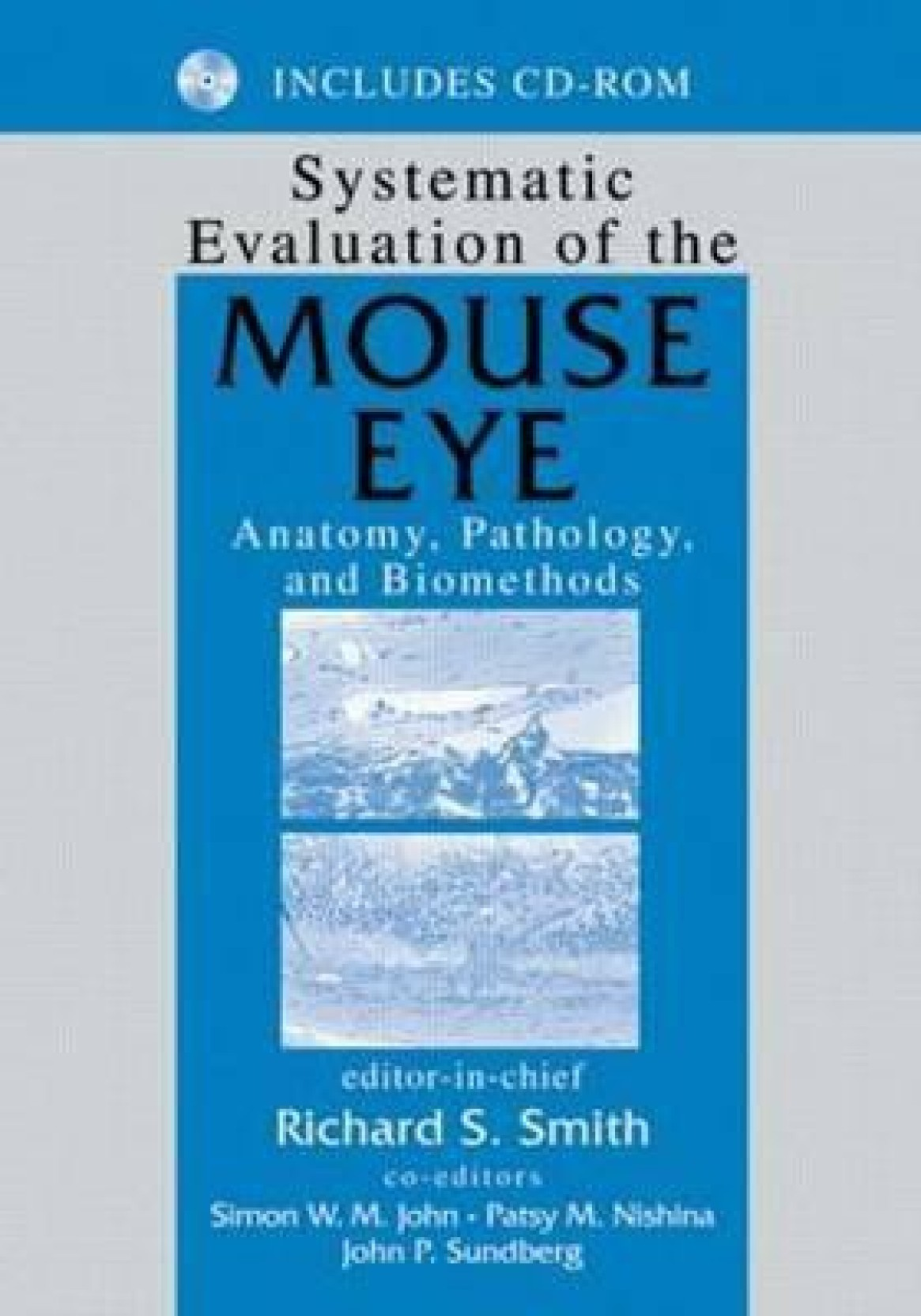 Systematic Evaluation of the Mouse Eye: Anatomy, Pathology, and ...