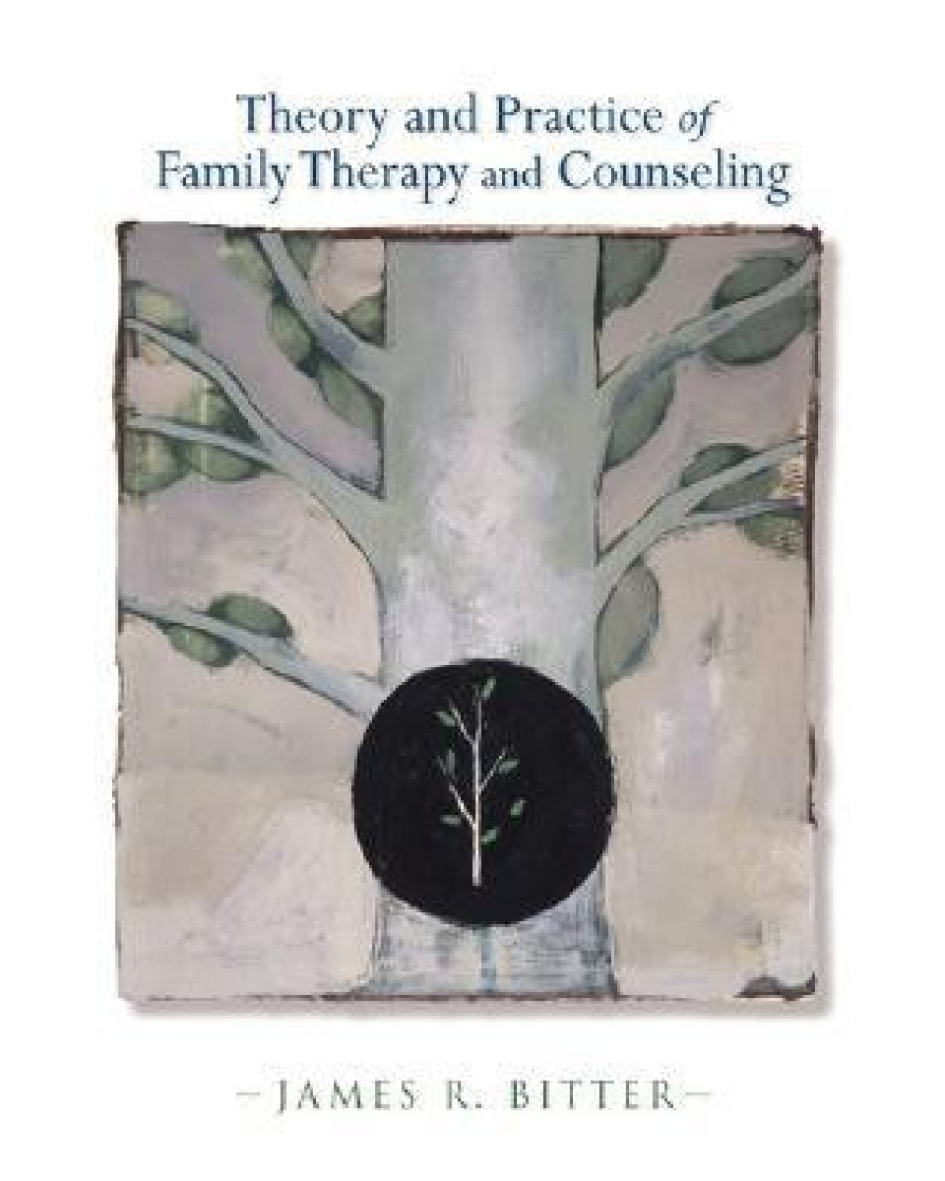 Theory and practice of family therapy and counseling 1st edition share biocorpaavc