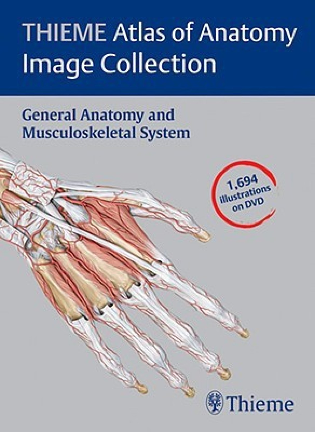 THIEME Atlas of Anatomy Image Collection: General Anatomy and ...