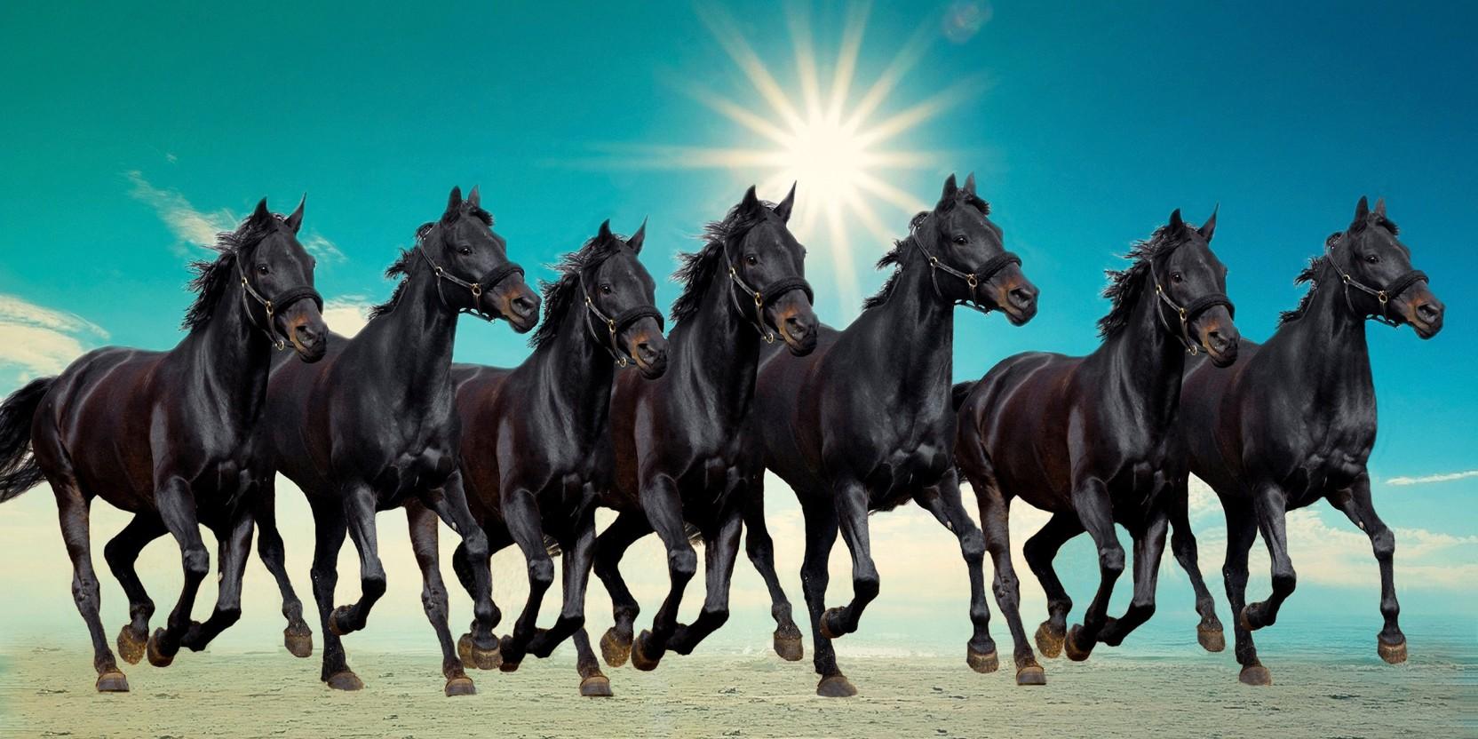 running horses painting according to vastu defendbigbirdcom