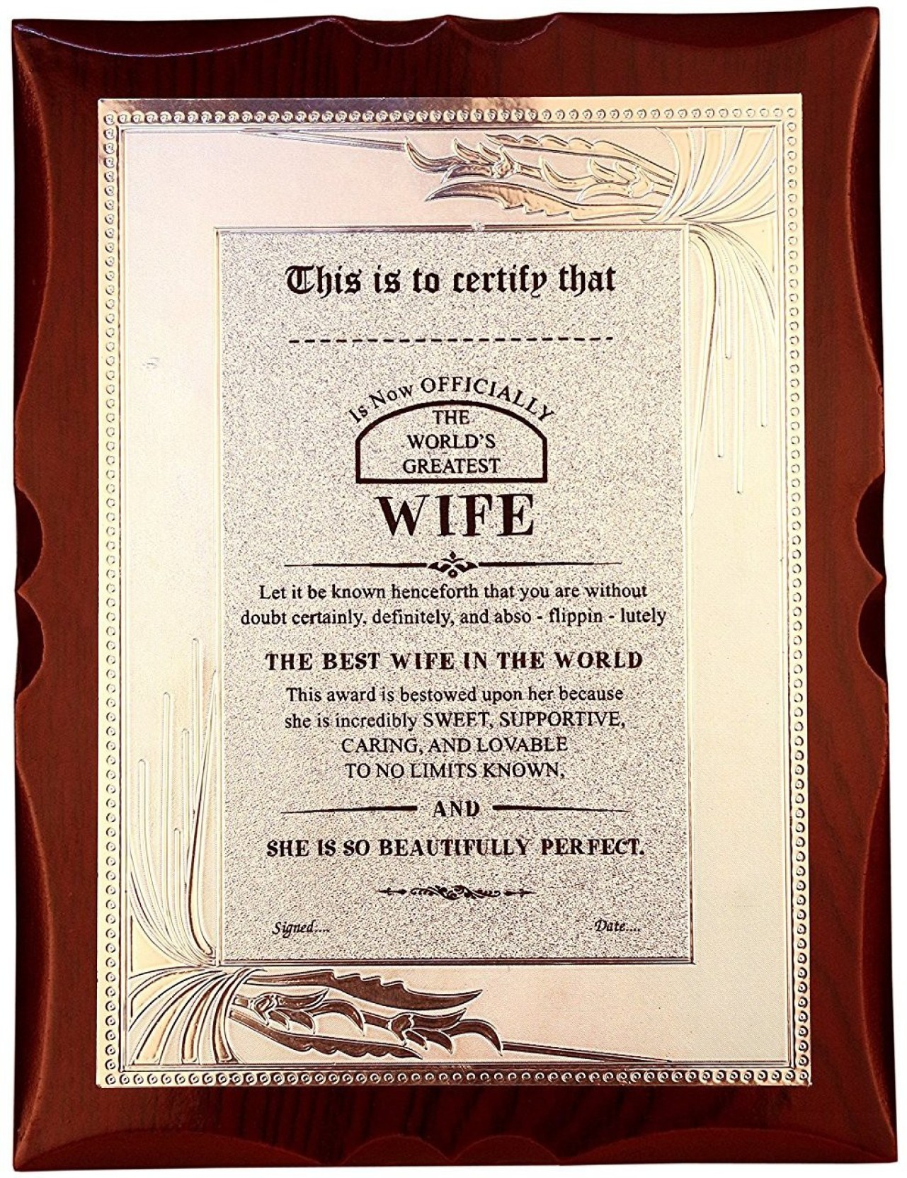 atpata funky world s best wife premium certificate award trophy