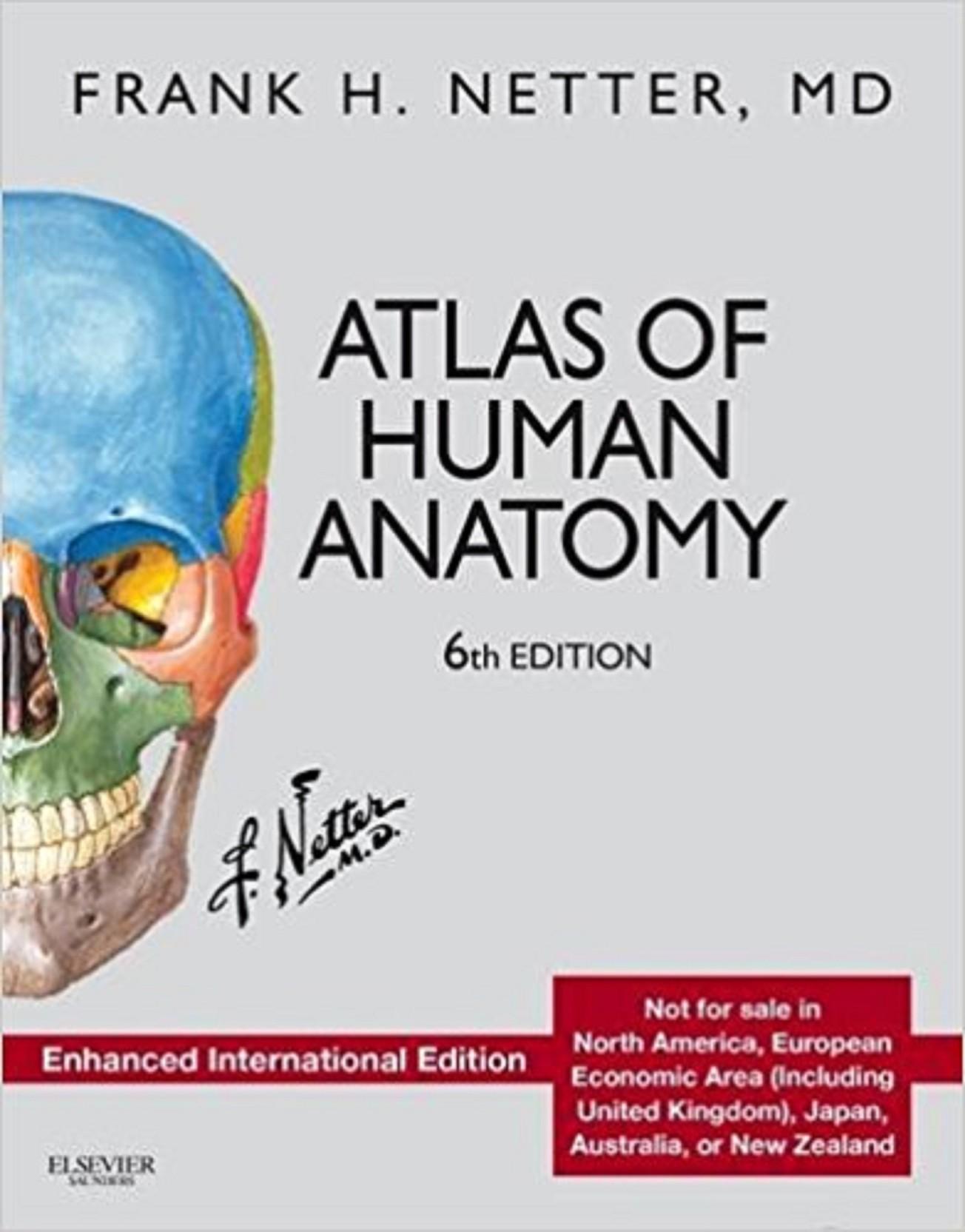 Atlas of Human Anatomy: Enhanced International Edition (Netter Basic ...