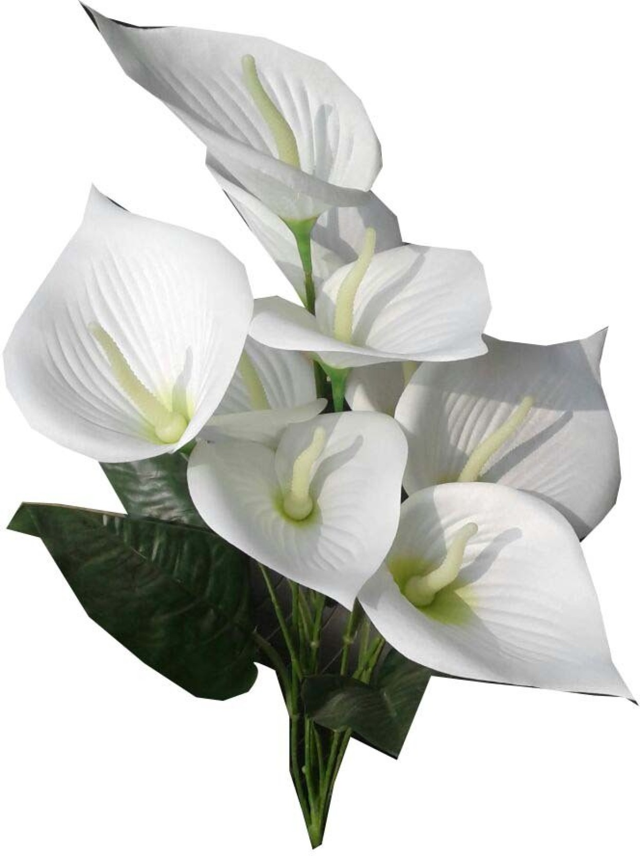 Kaykon Beautiful White Anthurium Flower Bunch For Home Decor Office