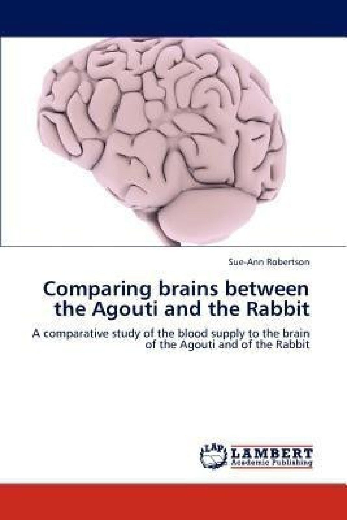 Comparing Brains Between the Agouti and the Rabbit - Buy Comparing ...