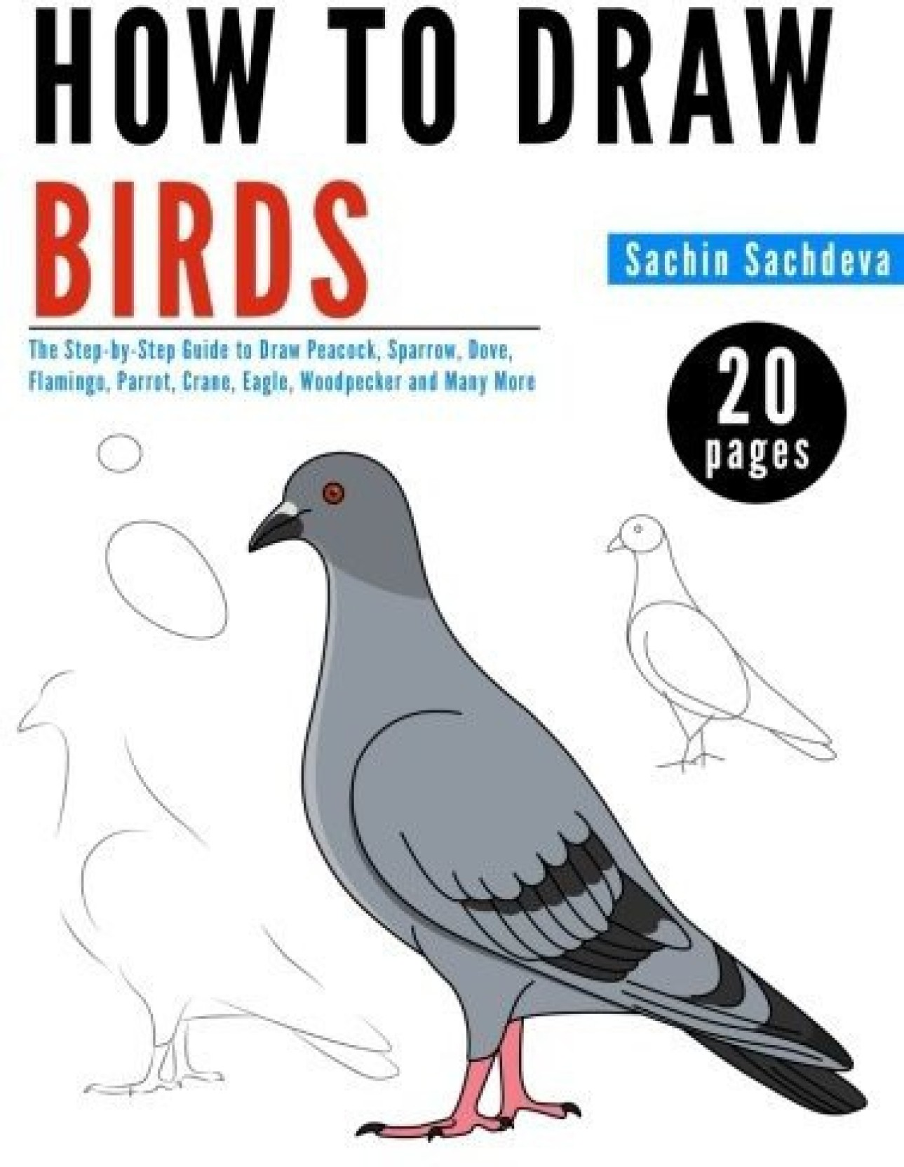 Generic How to Draw Birds The Step by Step Guide to Draw