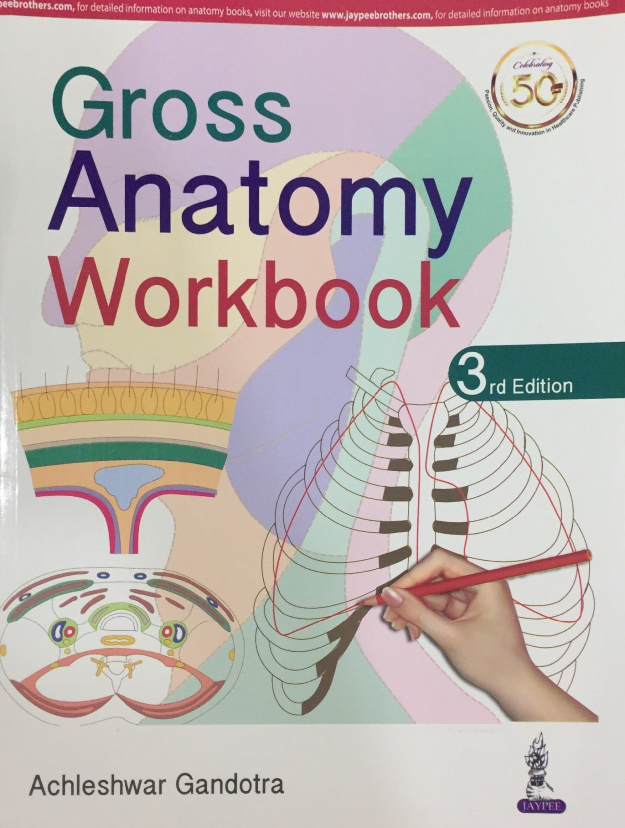 Gross Anatomy Workbook Buy Gross Anatomy Workbook By Achleshwar