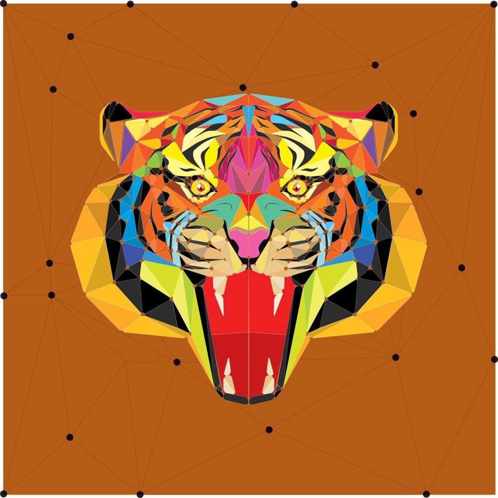 Pitaara Box Tiger Head In Geometric Pattern Framed Wall Art Painting