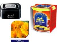 Debonair Debonair Floral, Areon Gel Apple (80ml) Car Perfume Gel(115 G) Image