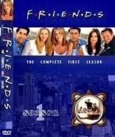 Friends Season - 1 1(DVD English)