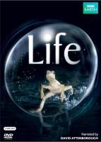 Life Complete(DVD English)