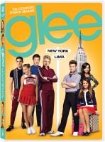 Glee Season - 4 4(DVD English)
