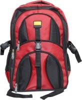 Dazzler d05 22 L Laptop Backpack(Black, Red)