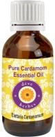 Deve Herbes Pure Cardamom Essential Oil - Elettaria Cardamomum(10 ml)