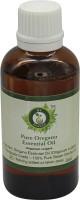 R V Essential Pure Oregano Essential Oil 30ml- Origanum Vulgare(30 ml)