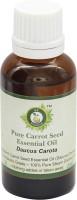 R V Essential Pure Carrot Seed Essential Oil 30ml- Daucus Carota(30 ml)