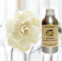 Devinez 1000-2045, Gardenia Essential Oil, 100% Pure, Natural & Undiluted(1000 ml)