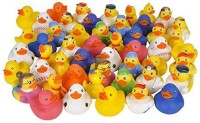 Rhode Island Novelty Assorted Rubber Ducks Bath Toy(Multicolor)