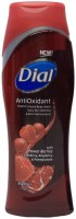 Dial AntiOxidant with Power Berries Body Wash(473 ml)