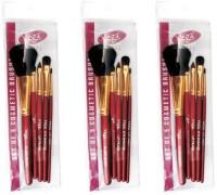 Vega Set Of Five Make-up Brushes(Pack of 15)