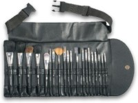 Vega Set of 20 Brushes