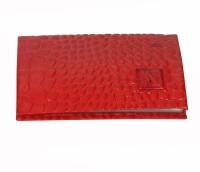 ADAMIS 10 Card Holder(Set of 1, Red)