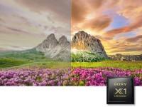 Sony Bravia X9500G