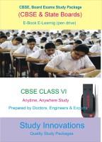 Study Innovations CBSE class VI Study Material(Pendrive)