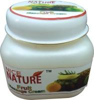 Nice Nature High Quality Fruit Massage Cream 100gms(100 g) - Price 100 69 % Off
