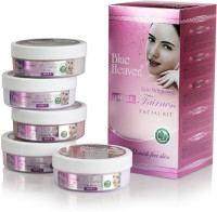 Blue Heaven Fairness Facial Kit 800 ml(Set of 5)