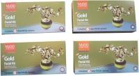 VLCC Gold Facial Kit 240 g(Set of 4)