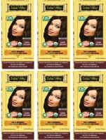 Indus Valley 100% Organic Botanical Dark Brown- 6 Pack- Ecocert certified Hair Color(Dark Brown)